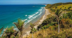 A roadtrip through Northland: our 5 day itinerary