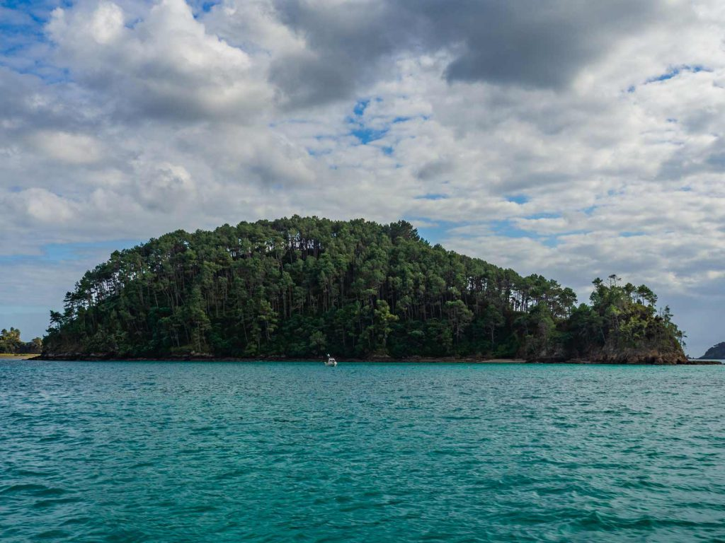 One of the many islands in the Bay of Islands
