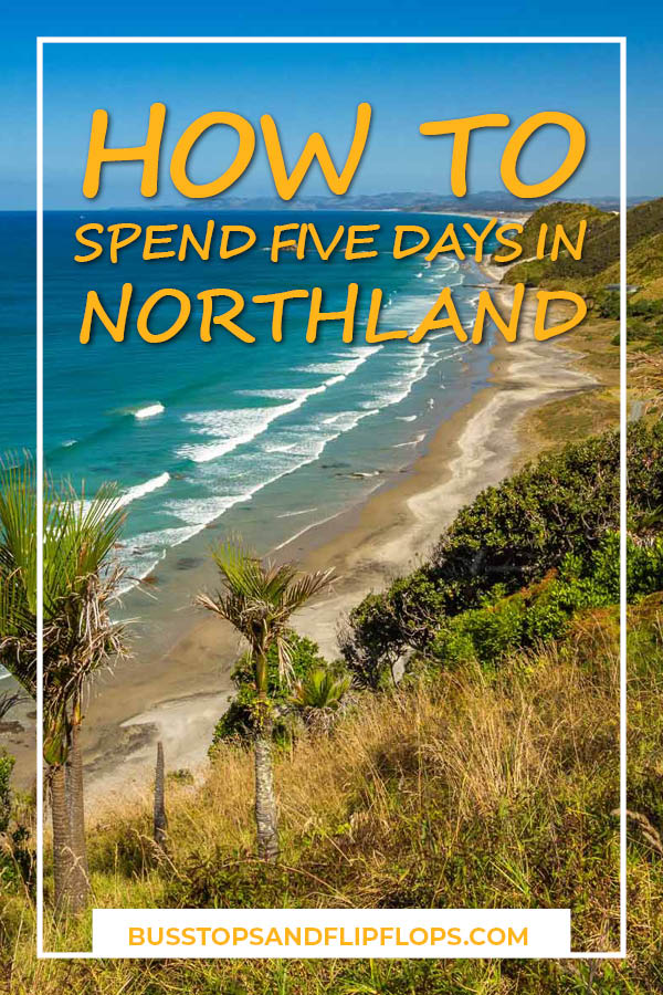 Northland is best known for the Bay of Island, a popular tourist destination. But what else can you do there? Our 5 day itinerary takes you on a roadtrip of the entire peninsula over cliff tops, through kauri forests and to beachside towns.