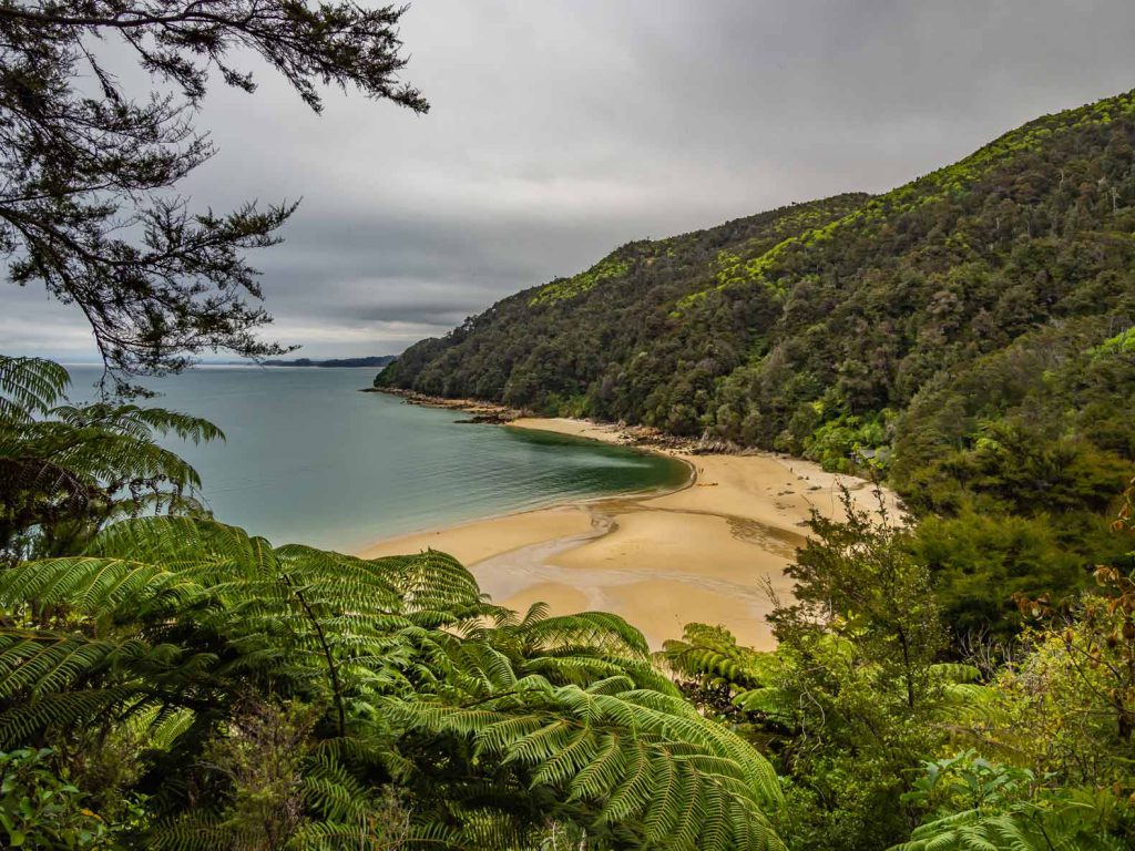 New Zealand South Island Hikes: Abel Tasman Coast Track