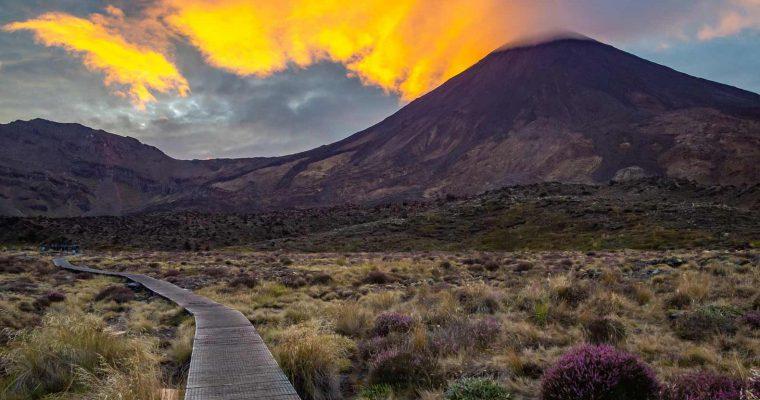 6 Amazing New Zealand North Island Hikes