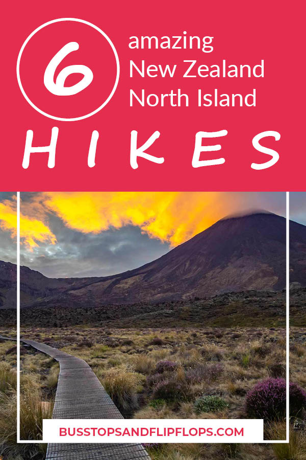 Hiking in New Zealand is not limited to the South Island! There are also many beautiful North Island hikes! Go check out our 6 recommendations and select your favorite.