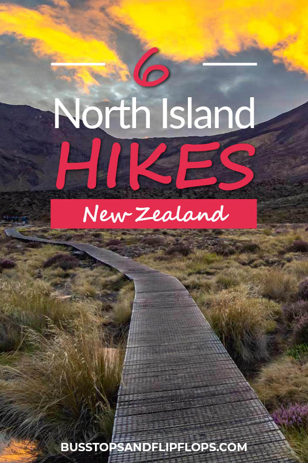 We've selected our 6 favorite New Zealand North Island hikes to show you its awesomeness and diversity. There's a hike  for everyone; even non-hikers!