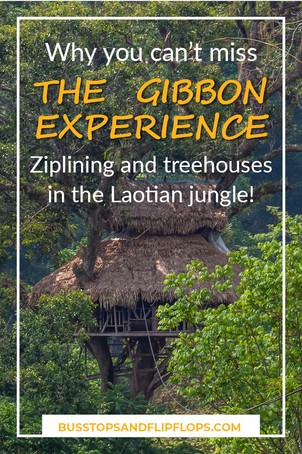 You don't want to miss The Gibbon Experience when you're visiting Laos! Find out all about how we spent three days in the jungle of Laos ziplining, trekking and sleeping in treehouses.