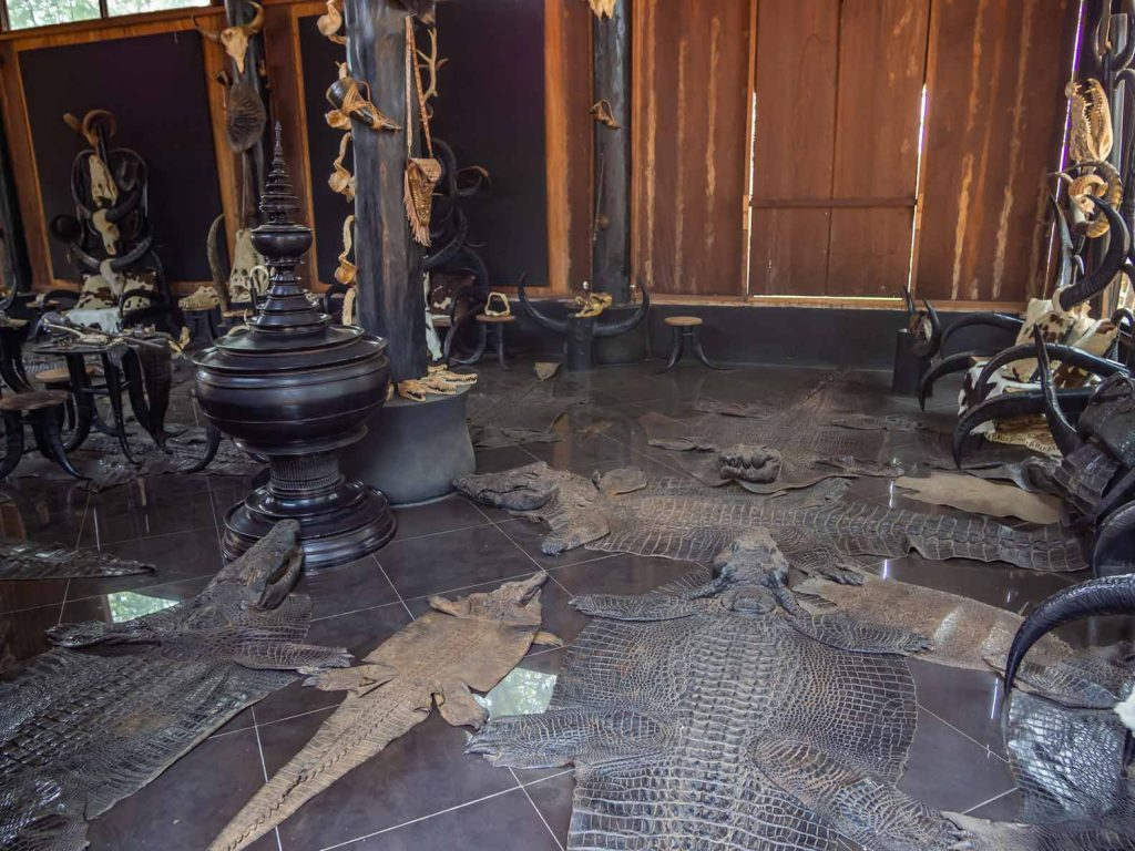 Dead animals at the Black House in Chiang Rai