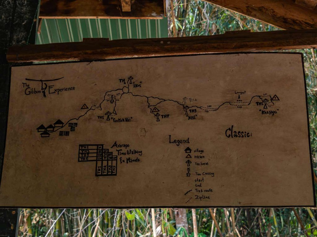 Ziplines and Treehouses of the Gibbon Experience