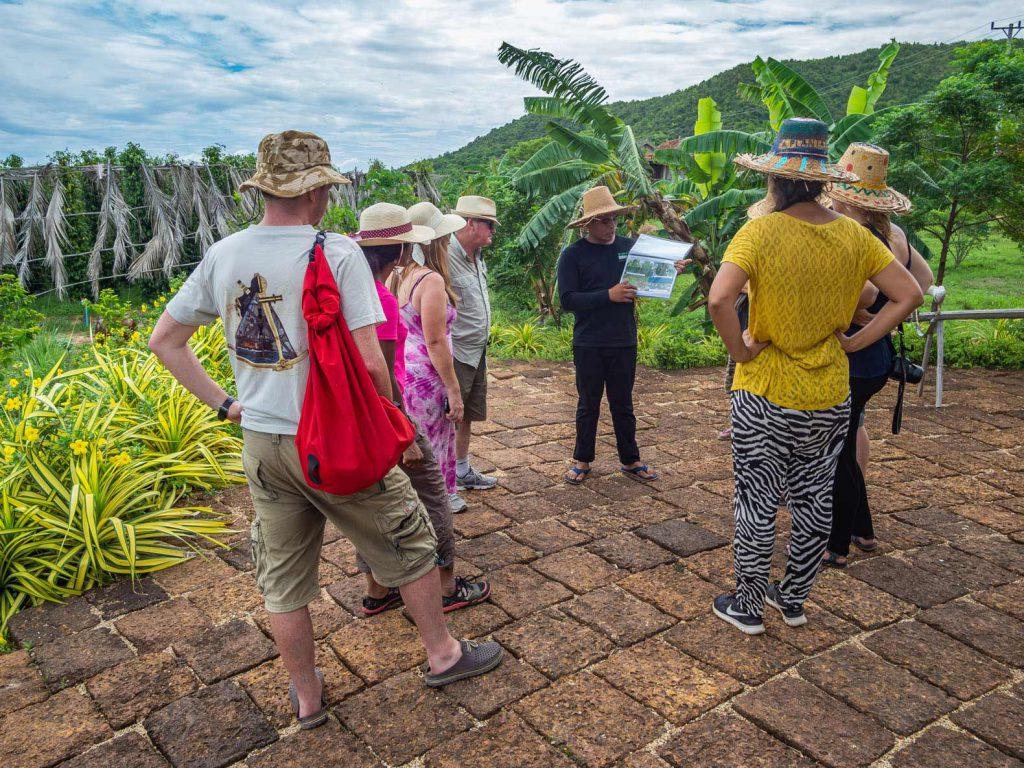 Visit a Kampot pepper plantation