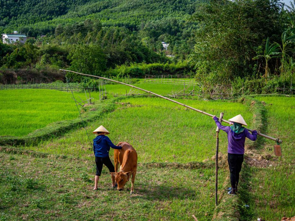 Villagers at work in Bong Lai Valley
