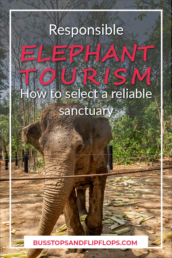 We visited a super awesome elephant sanctuary in Thailand. There are a lot of them and many are a bit shady. Make sure you practice responsible elephant tourism! Read all about our experience and tips on how to select one yourself!