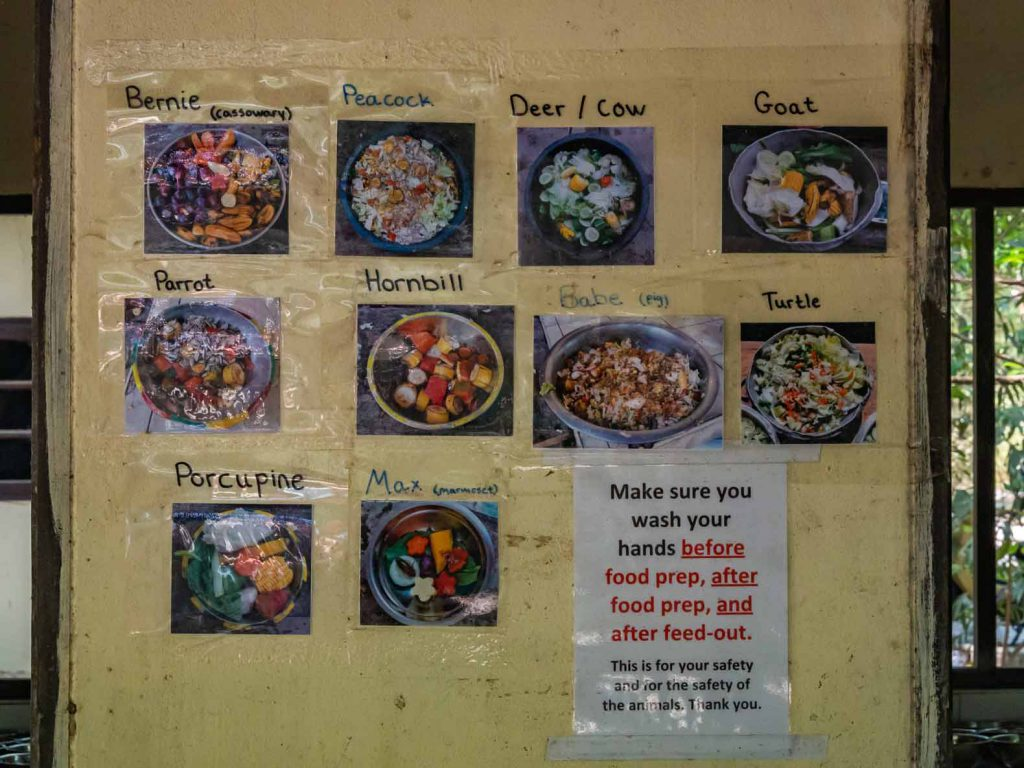 Animal diets at the WFFT shelter in Hua Hin Thailand