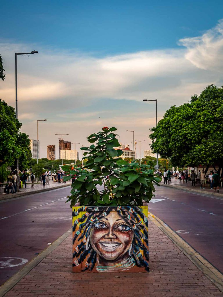 Even the planters are filled with urban art in Cartagena. Graffiti in Colombia