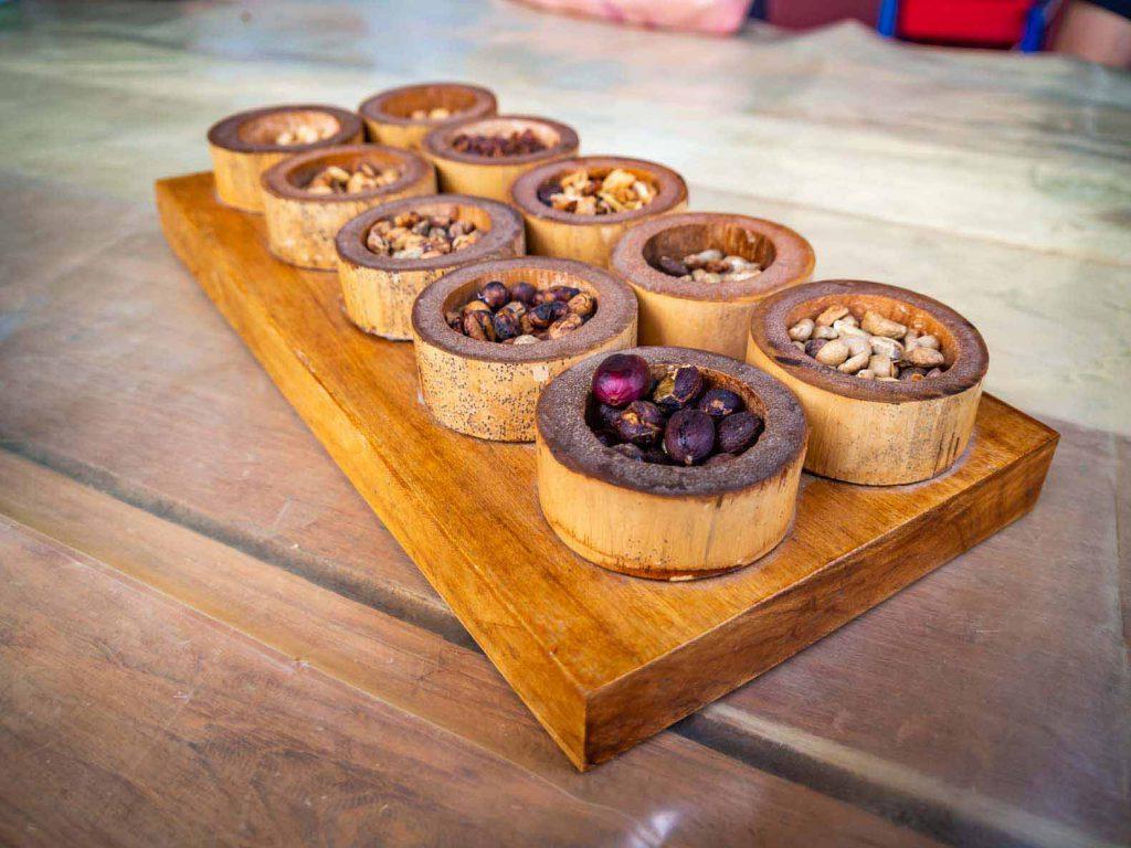 Salento Coffee Tour - Tasting coffee beans