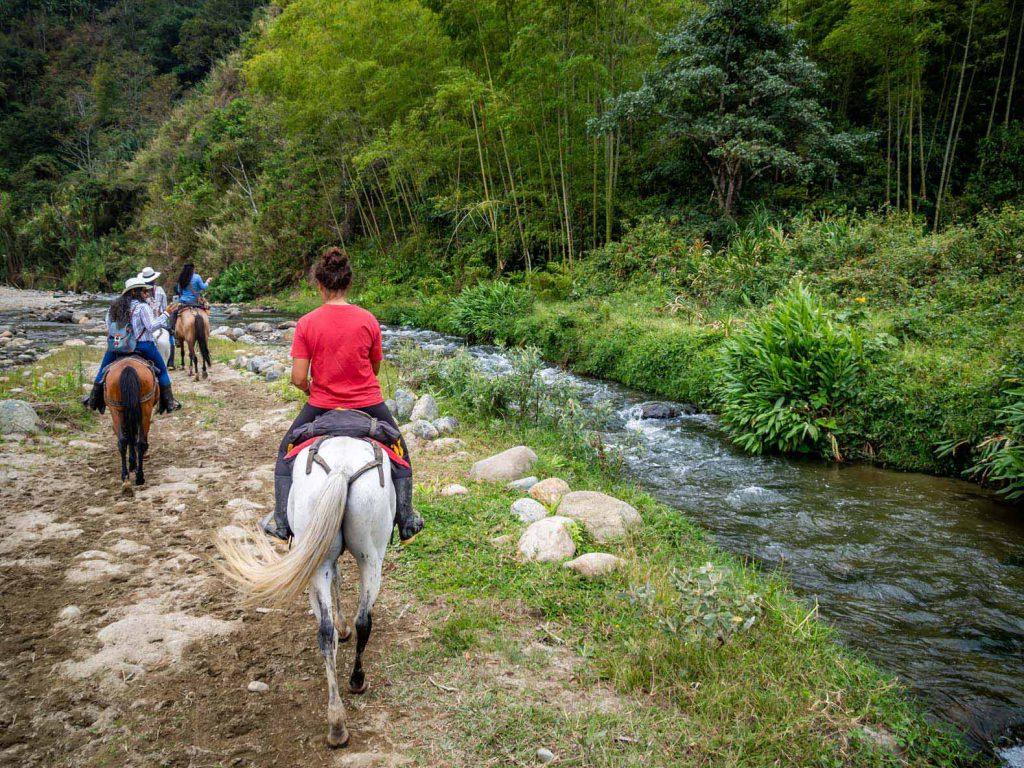 Horse Riding Salento - River ride